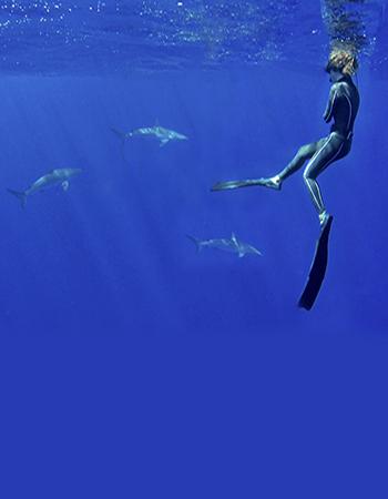 Gador Muntaner Sharks Specialist and Blue Force Fleet Ambassador