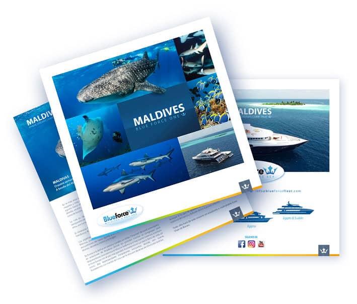Diving in Maldives, liveaboard brochure icon