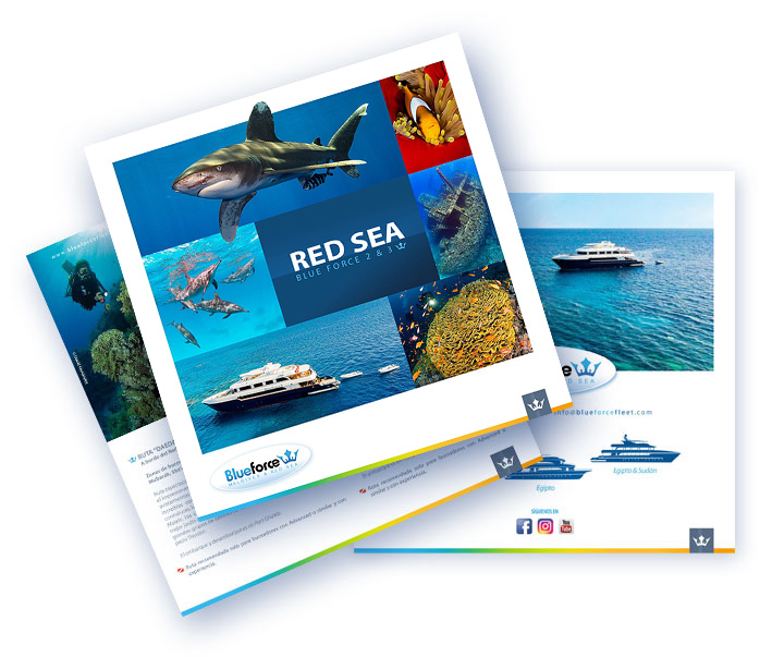 icon brochure diving red-sea liveaboard Egypt